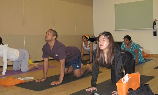 Yoga-Therapy-Conference-2015-26
